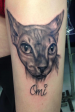 Black and grey sphinx cat portrait  tattoo